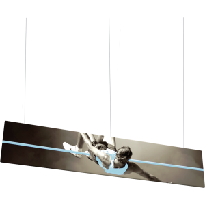 Flat Panel Formulate Master 2D Hanging Structure